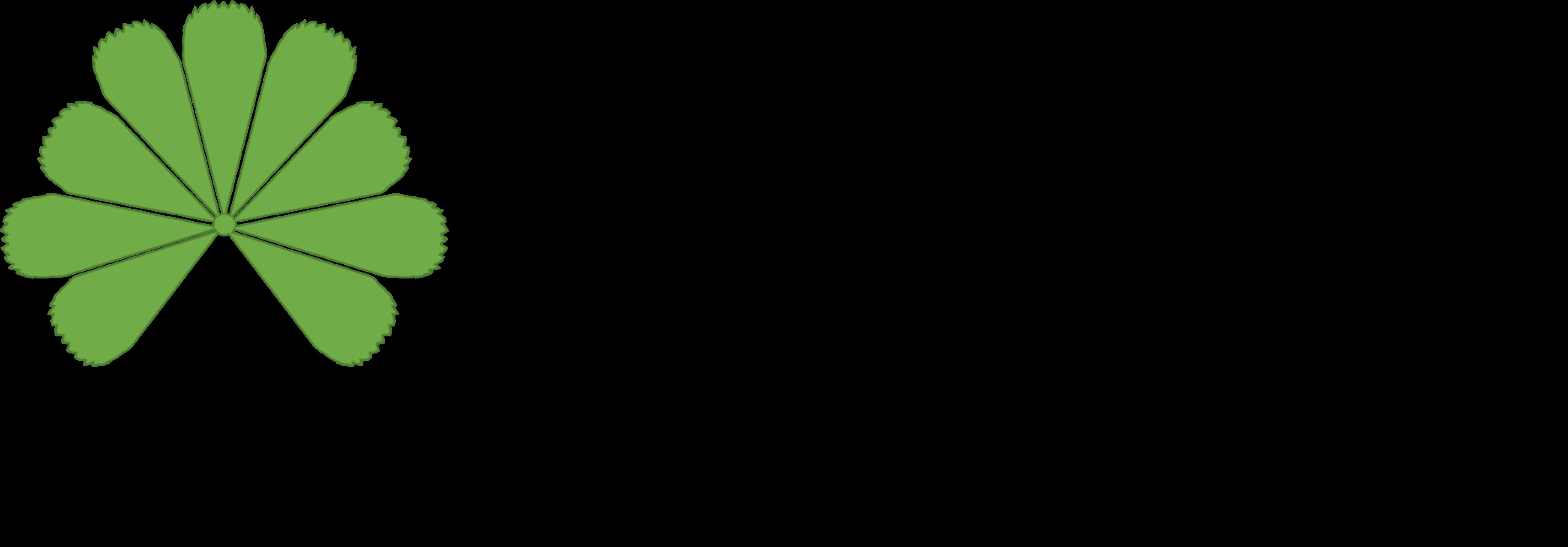 Blumenatelier Alchemilla